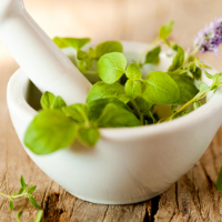 herbal-medicine-and-naturopathy